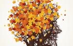 Капуста кале: популярные сорта, Огородники