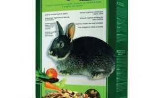 Витамины для кроликов и какие витамины нужны кроликам для роста