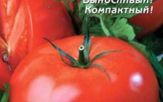 Томат Загадка: описание, фото, характеристика и выращивание сорта