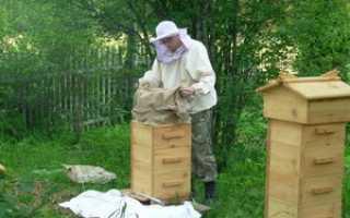 Как изготовить пчелиные ульи своими руками: материалы, как сделать чертёж, по каким принципам строить