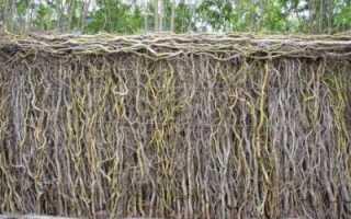 Как сделать плетень на террасу