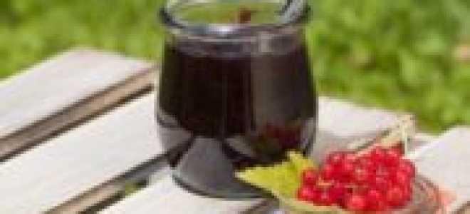 Джем из красной смородины: 5 способов заготовки – как приготовить смородиновый джем быстро и просто