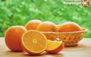 Апельсиновые корки: польза и вред, рецепты народной медицины