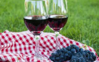 Вино изабелла в домашних условиях своими руками