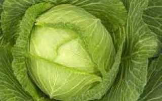 Надо ли обрывать нижние листья у капусты: все «за» и «против»