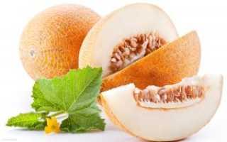 Шесть самых вкусных и полезных сортов дыни