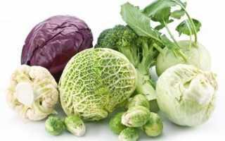 Разновидности капусты, описание основных подвидов капусты, лучшие сорта — Овощи, Описание, советы, отзывы, фото и видео
