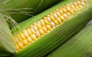 Консервирование кукурузы в зернах в домашних условиях