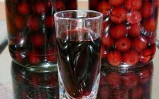 Наливка из вишни: лучшие рецепты напитка на алкогольной и безалкогольной основе