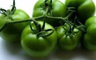Зеленые помидоры в бочке: как заквасить томаты на зиму