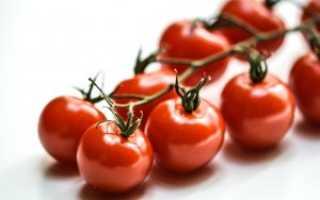 Томаты черри: полезные свойства и состав помидоров