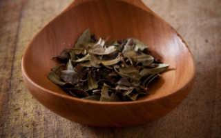 Чем полезна толокнянка: свойства и состав её листьев, Толокнянка или медвежьи ушки
