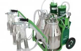 Доильные аппараты для коров в домашних условиях, как сделать, недостатки и преимущества