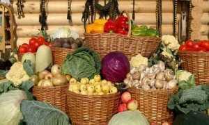 ХРАНЕНИЕ ОВОЩЕЙ, картофель, морковь, Свеклу, Хранение белокочанной капусты, Хранение лука и чеснока, редьки, тыквы