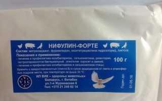 Нифулин форте для птиц и голубей: применение, инструкция