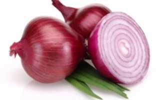 Красный лук: калорийность, применение, польза и вред для организма