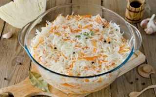 Лучшие сорта капусты для засолки и квашения: выбираем среднеспелые и позднеспелые сорта