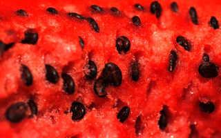 Арбузные семечки — польза и вред, полезные свойства, можно ли есть семечки арбуза, видео