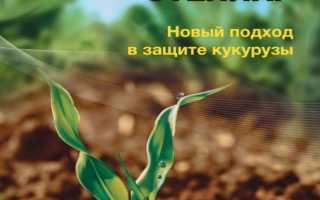 Гербицид Стеллар — инструкция по применению