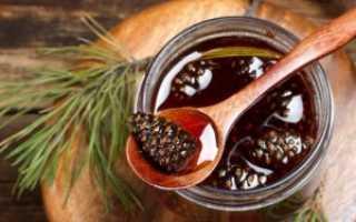 Полезные свойства соснового меда: рецепт приготовления продукта из сосновых побегов
