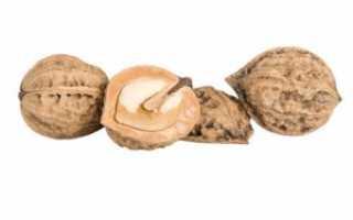 Как сделать варенье из маньчжурского ореха