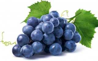 Виноград — это фрукт, ягода или овощ
