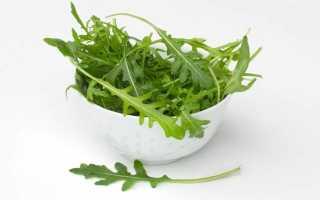 Сорта рукколы: описание фото, выращивание и уход