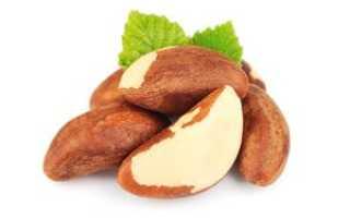 Бразильский орех – польза, вред, состав и калорийность
