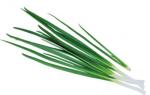Лук-батун – описание с фото; выращивание и уход; польза и вред; рецепты