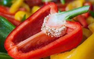 Сорта перца для Подмосковья: описания, советы по уходу и посадке