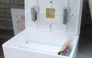 Инкубатор Рябушка-70: основные функции и характеристики