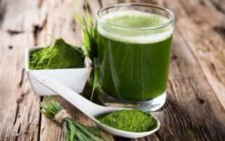Спирулина: полезные свойства, химический состав, витамины и калорийность, применение в медицине и косметологии