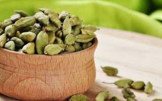 Полезные свойства кардамона, лечебный состав и противопоказания