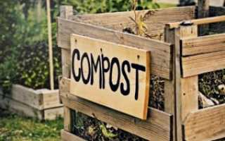 Компост в мешках для мусора: стоит ли готовить удобрение в полиэтиленовых пакетах