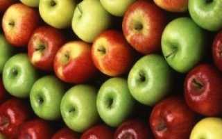 Описание разных сортов яблок
