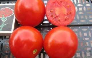 Гибрид томата «Солероссо F1»: фото, отзывы, описание, характеристика, урожайность