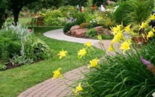 Уход за садовыми дорожками