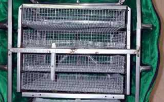 ТГБ — инкубатор для яиц
