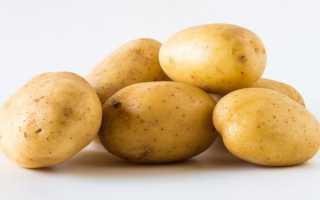 Картофель Фермер: описание сорта, фото, характеристика, отзывы