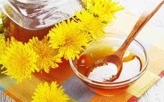 Мед из одуванчиков — польза и вред, лечебные свойства для здоровья, видео