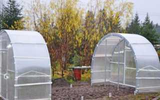Теплица со съемной крышей: варианты с раздвижным, снимающимся, разъемным верхом, парник Кормилица, фото, видео